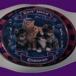 catsmeow